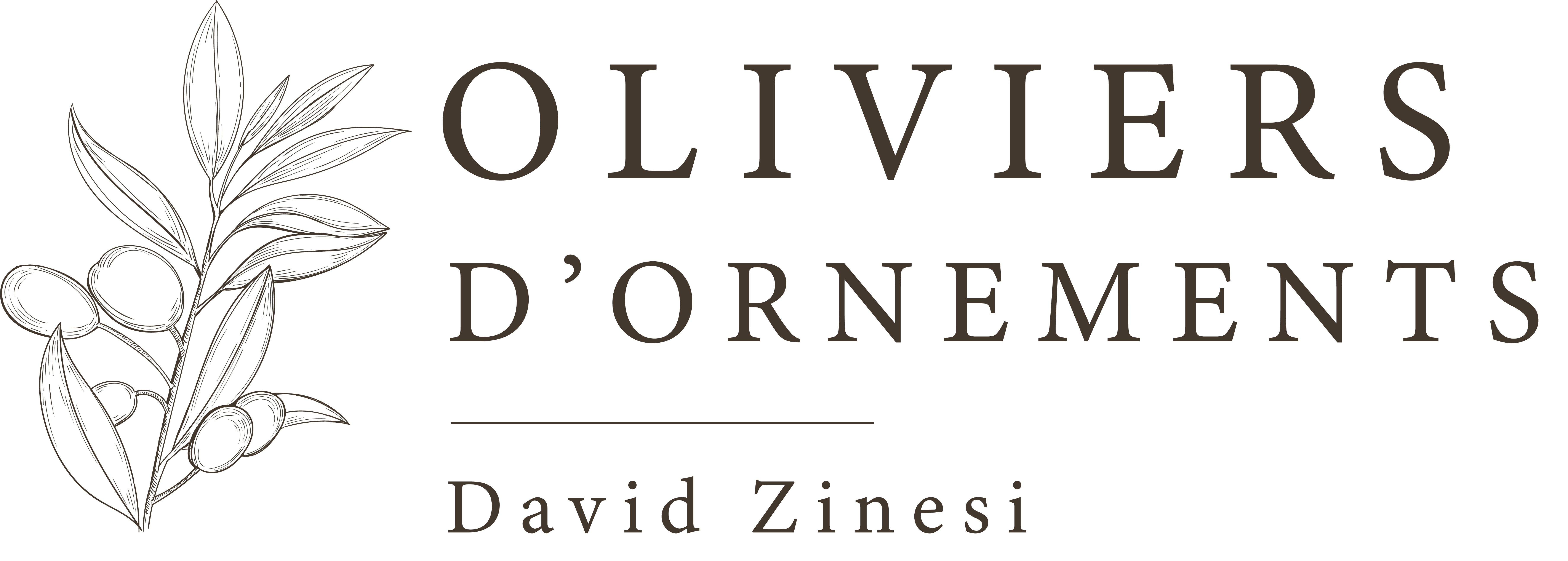 logo olivier ornement